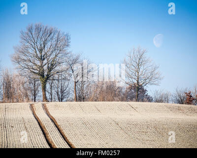 Frozen acre near Luebeck, northern Germany - Stock Image