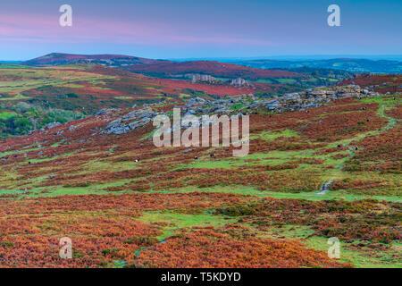 Haytor Rocks seen from Saddle Tor, Dartmoor National Park, Ilsington. Devon, England, United Kingdom, Europe - Stock Image