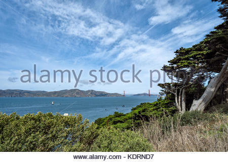 View of Golden Gate Bridge and Marin headlands from the Coastal Trail at Land's End, San Francisco, California. - Stock Image
