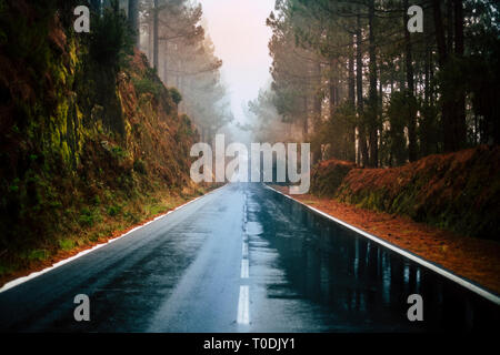 Long way road in the mountain with forest trees wood around and fog or clouds at the end like fog bad weather - rain on the asphalt and dirty ground - - Stock Image