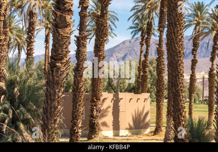 Furnace Creek Ranch Village in Death Valley National Park. Stand of Date Palms. The Oasis At Death Valley. - Stock Image