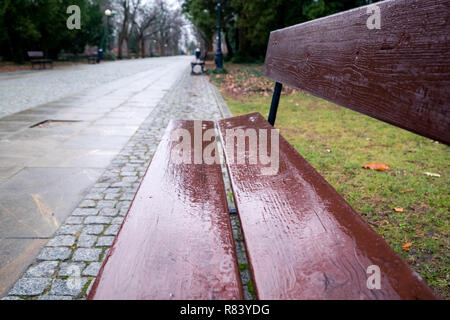 empty wet brown bench in the park in Warsaw, Poland, blurred background - Stock Image