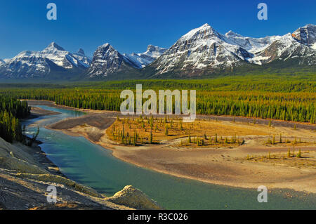 Canada, Alberta, Jasper National Park. Mountains and Athabasca River. - Stock Image