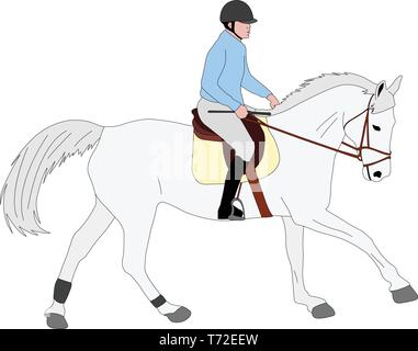 horse riding colored illustration - vector - Stock Image