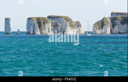 Old Harry chalk cliffs on Jurassic coast, Dorset. - Stock Image
