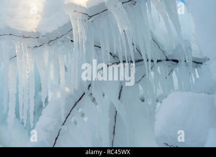 On the branches of the tree grew huge icicles - Stock Image