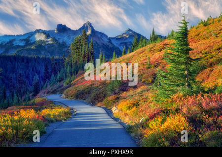 Fall color and sunrise with path in Mt. Rainier National Park with view of Tatoosh Mountains. Washington - Stock Image