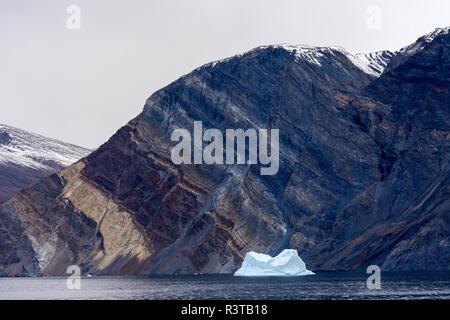 Greenland. East Greenland National Park. Kong Oscar Fjord. Antarctic Sound. Wildly folded rocks. - Stock Image