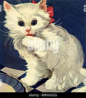 White Kitten Licking Paw - Stock Image
