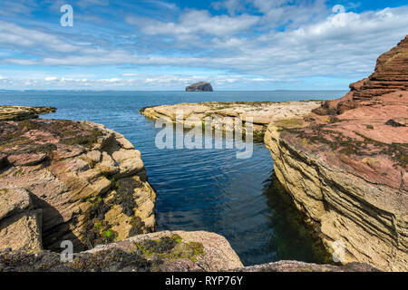 The Bass Rock from the Gegan rocks, Seacliffe Beach.  Near North Berwick, East Lothian, Scotland, UK - Stock Image