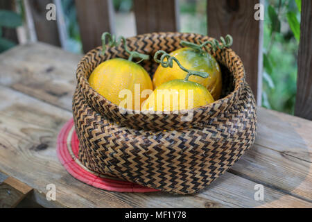 Still life images of - Stock Image