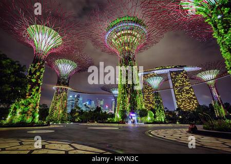 SINGAPORE - DECEMBER 02: Night view on Gardens by the Bay on December 02, 2013 in Singapore. Gardens by the Bay - Stock Image