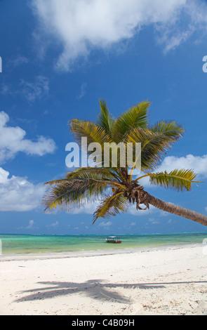 Zanzibar, Echo Beach. A boat anchored off the calm waters of the East coast of Zanzibar. - Stock Image