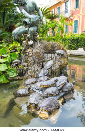 Terrapin pond at the Villa Durazzo, Santa Margherita Ligure - Stock Image