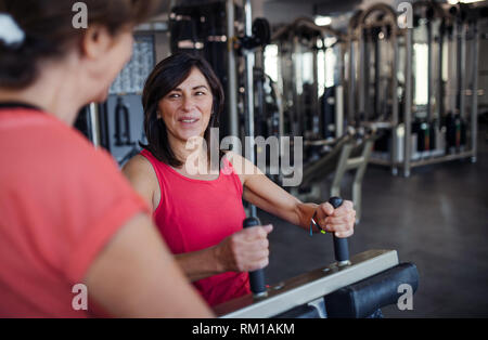 Two cheerful senior women in gym doing strength workout exercise. - Stock Image