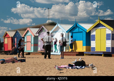 Victorian-era bathing boxes on the Dendy Street Beach, at Brighton on Port Phillip Bay, Melbourne - Stock Image