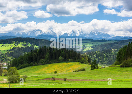 Amazing view over hills and meadows with tatra Mountains on horizon, Poland. - Stock Image