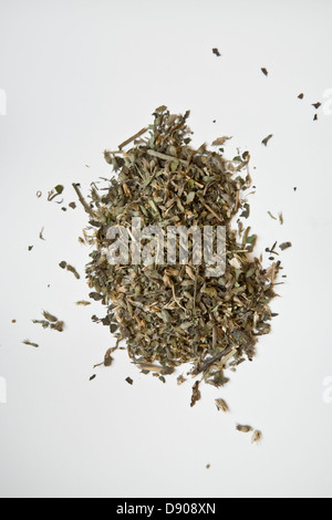 Heap of dried Catmint (Catnip) - Stock Image