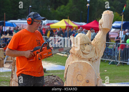 The carving arena during the 2017 competition at Carribridge 2017. - Stock Image