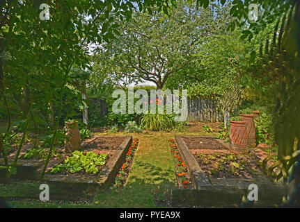 VEGETABLE GARDEN IN A PRIVATE GARDEN. AUGUST 2018. OAKHAM, RUTLAND, ENGLAND. Small planted enclosed vegetable gardens with raised beds - Stock Image