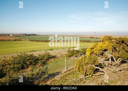 A view from Blakeney Downs on the North Norfolk coast looking towards the sea at Blakeney, Norfolk, England, United Kingdom, Europe. - Stock Image