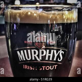 Murphy's Irish Stout - Stock Image