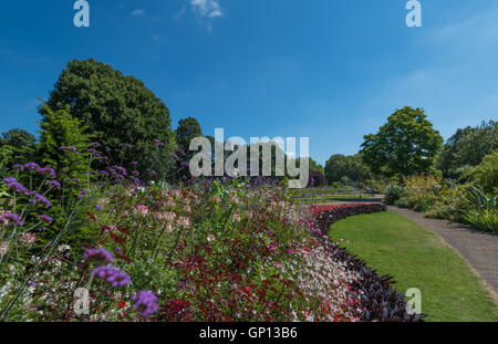 Hyde Park in the sunshine - Stock Image