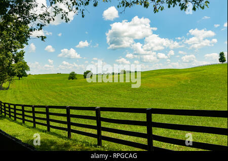 Landscape with hills and black board fence - Stock Image