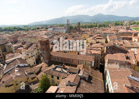 View from the top of the Torre Delle Ore, Lucca, Tuscany, Italy, Europe - Stock Image