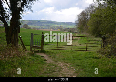 Gate on footpath with metal kissing gate to the side on a footpath near Whichford Woods, Warwickshire - Stock Image