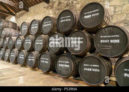 Quinta da Boeira showroom visitor center, wine barrals,  Porto, Portugal Porto, Portugal - Stock Image