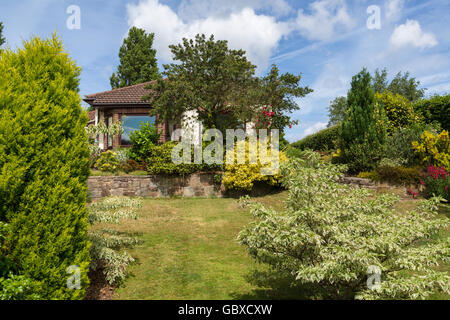 Bungalow, house, and front garden in Summer, England - Stock Image