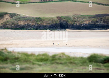 The distant figures of dog walkers on Crantock Beach at low tide in Newquay in Cornwall. - Stock Image