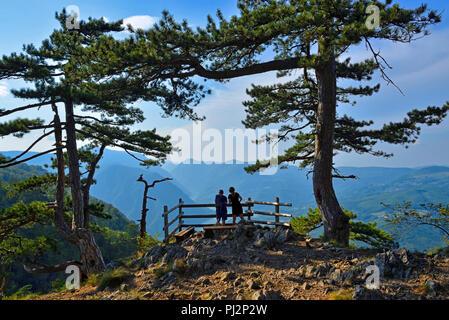 Tourists on Banjska Stena, Tara National Park, Serbia - Stock Image