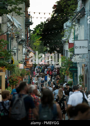 Summer evening on Rue du Petit-Champlain in old Québec City, Canada.  Rue du Petit-Champlain lined with shops and restaurants - Stock Image