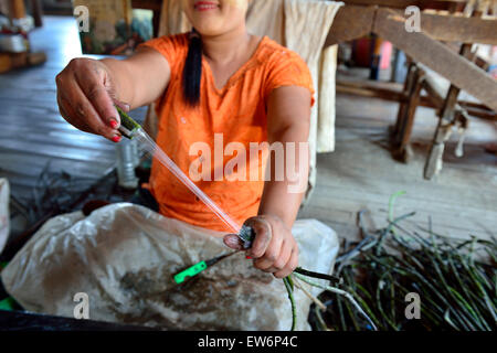 woman stripping strands off the lotus stalks in preparation for the process of making into fibre for weaving.inle - Stock Image