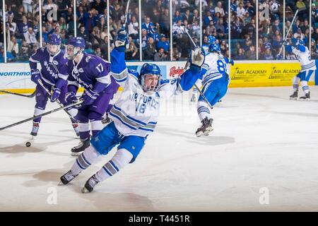 U.S. Air Force Academy – Air Force's Evan Feno celebrates after a teammate scores a goal during the Atlantic Hockey Quarterfinals against Niagara University on March 16, 2019 at the Cadet Ice Arena. Niagara University defeated Air Force  4-5. - Stock Image
