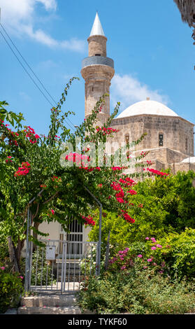 Camii-Kebir Mosque in Pafos old town, Cyprus. - Stock Image