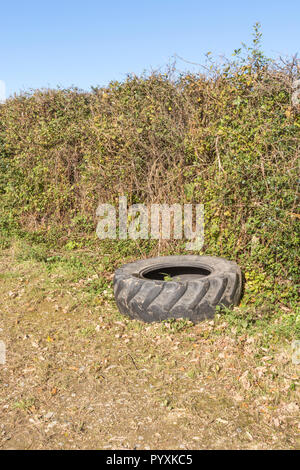Tractor tyre at the side of an agricultural field, UK. - Stock Image
