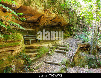 Alcove under the sandstone cliffs near Katoomba, Blue Mountains National Park, New South Wales, Australia. - Stock Image