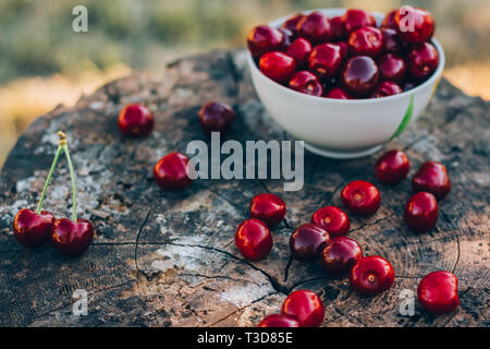 A wooden old stump with a sweet cherry on it. Background - Stock Image