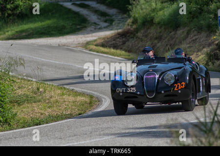 PESARO COLLE SAN BARTOLO , ITALY - MAY 17 - 2018 : JAGUAR XK 120 1950 on an old racing car in rally Mille Miglia 2018 the famous italian historical ra - Stock Image