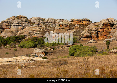 Madagascar's 'Grand Canyon', Isalo National Park, Madagascar, Africa. Tapia Tree Riparian Forest. - Stock Image