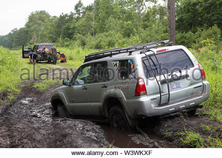 Silver 4x4 stuck in the mud along a forest road in Croatan National Forest. - Stock Image
