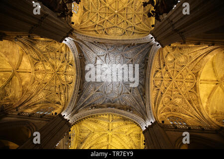 Spain. Andalusia. Seville. Cathedral. Inside. - Stock Image
