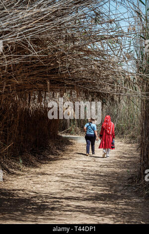 April, 6, 2019: Abu Dhabi, UAE: Female tourists at Al Wathba Wetland Reserve Abu Dhabi, UAE - Stock Image