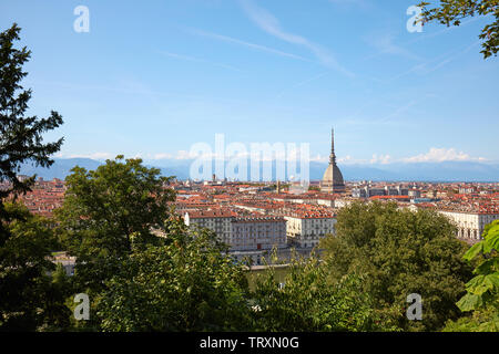 Turin skyline view and Mole Antonelliana tower seen from the hill with vegetation in a sunny summer day in Italy - Stock Image