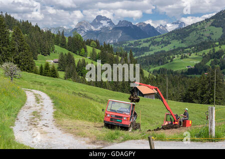 Farmer working on a meadow in the Swiss Alps, loading manure onto his small Aebi TP45 multipurpose transporter. - Stock Image