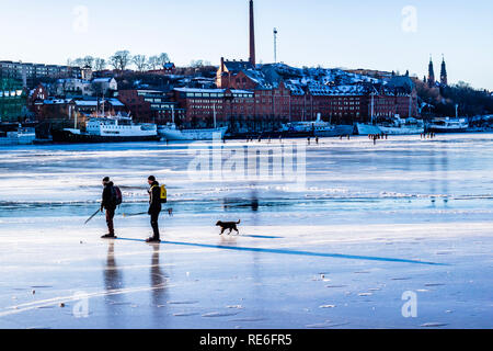 Stockholm, Sweden. 20th January, 2019. The frozen bay of Lake Malaren in the city centre brings people of all ages out for a sunny Sunday skate at Stockholm, Sweden. - Stock Image