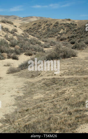 Earthquake-bent bed of Wallace Creek on the San Andreas Fault, Carrizo Plain National Monument, California. Digital photograph - Stock Image